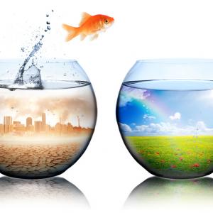 Mustervorlage nach DIN EN ISO 14001:2015 – Umwelt